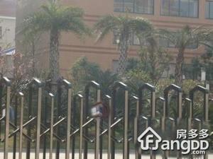 新红厦公寓小区图片