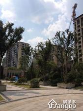 保利叶之林小区图片
