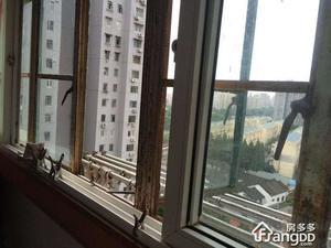 金杨新村八街坊小区图片