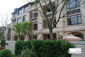 新弘国际城(公寓)小区图片