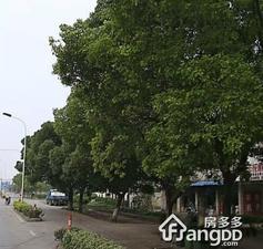 镇南新村小区图片