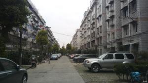 泗塘五村小区图片