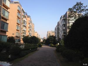 山水华庭小区图片