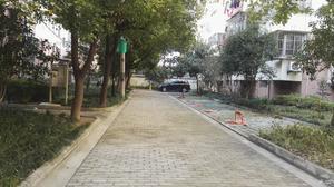 观景新村小区图片