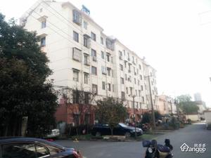 新庄西路18号小区图片