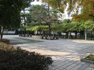 彩香一村三区小区图片