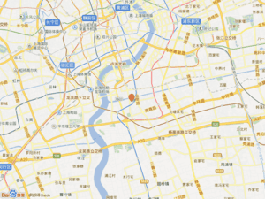 杨新路101号小区图片