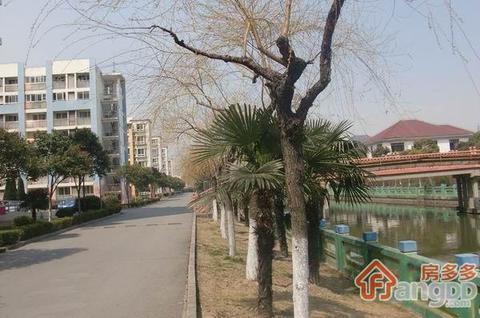 中芯花园三期(公寓)