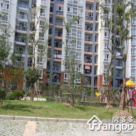 三林新村 2居 南北通透 电梯房 靠近地铁 小区图